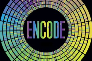 ENCODE project logo